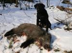 img_4838 Erfolreiche Jagd
